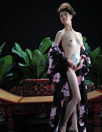 Chinese Model Linxi